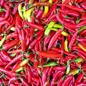 These ripe fruits of the Capsicum genus are widely used as a popular spice, but cayenne peppers also are dried and powdered or tinctured for medicinal purposes. Cayenne stimulates digestion and muscle movement in the intestines, which helps restore deficient digestive secretions and aids absorption of food nutrients.